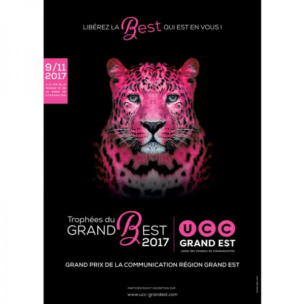 Grand Prix UCC Grand Est 2017